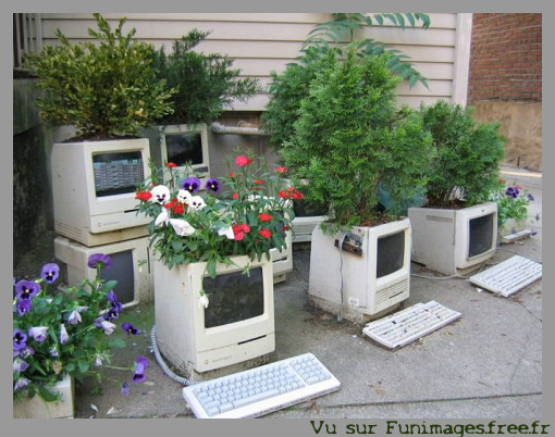 funimages image photo insolite informatique pc mac drole humour