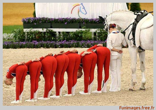 funimages image photo insolite sport humour